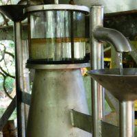 Vase florentin : séparateur de l'huile essentielle et de l'eau.